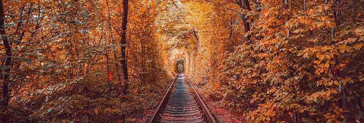Love tunnel in autumn