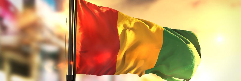 Guinea flag against city blurred background at sunrise backlight