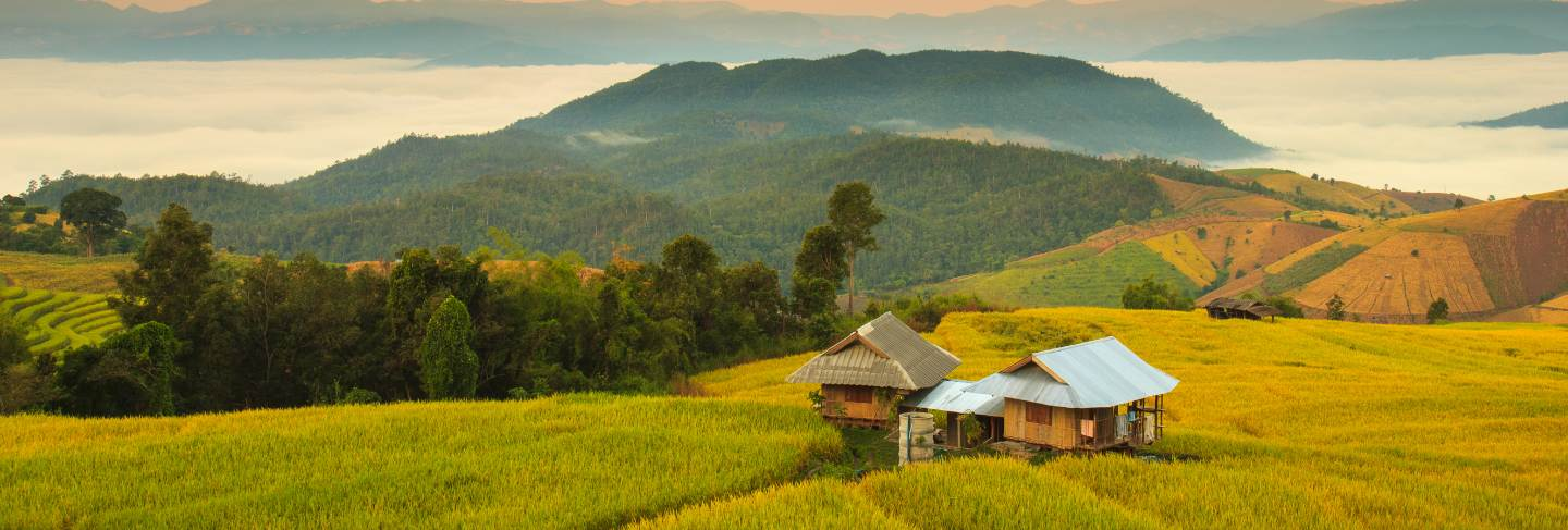Sunrise at terraced paddy field in mae-jam village