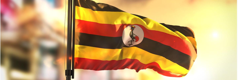 Uganda flag against city blurred background at sunrise backlight