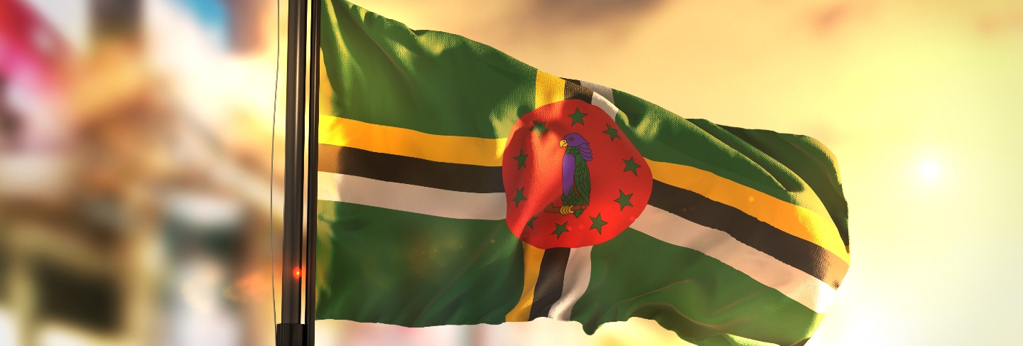 Dominica flag against city blurred background at sunrise backlight