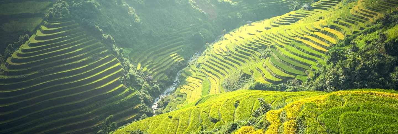 Beautiful view of rice terrace at mu cang chai, vietnam