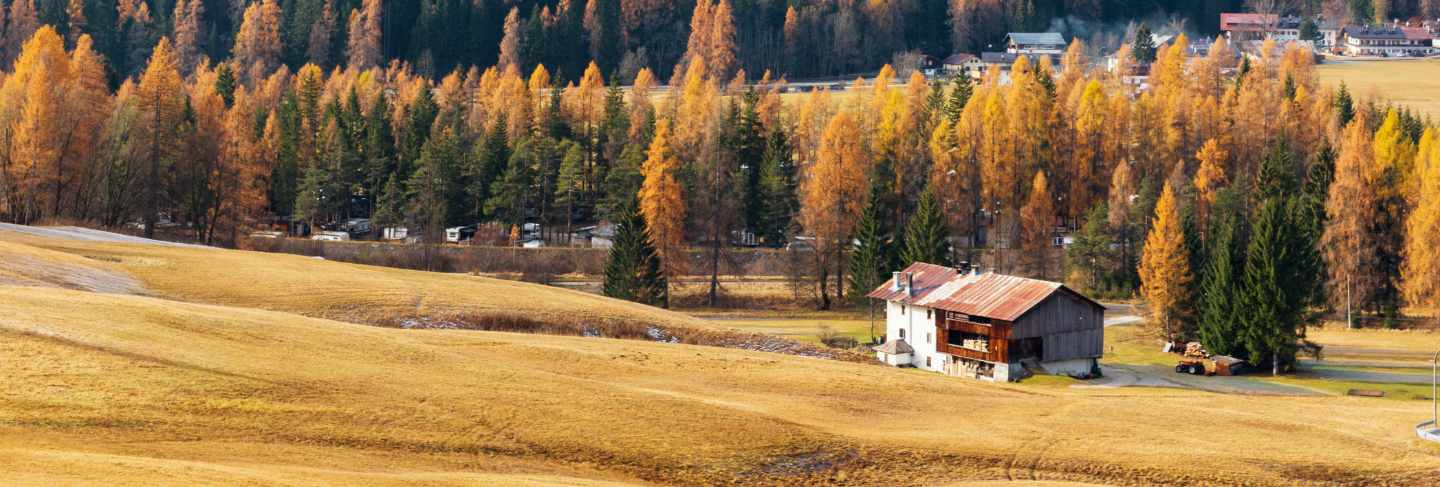 Autumn landscape with mountains, yellow forest and house, austria