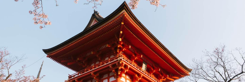 Kiyomizu-dera temple and sakura in japan