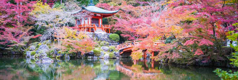 Beautiful daigoji temple with colorful tree and leaf in autumn season