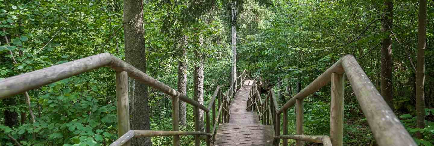 Wooden path and stairs leading to staburags cliff of rauna. latvia. Baltic
