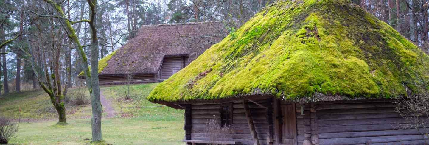 Village. old wooden log house. view with window, front door and with moss on the roof