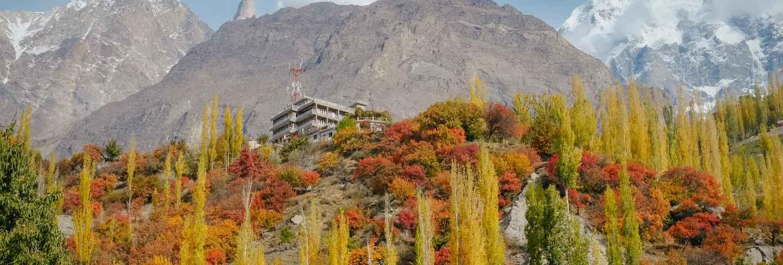 Colorful foliage forest trees in autumn season and snow capped mountain peak in karakoram range. Premium Photo