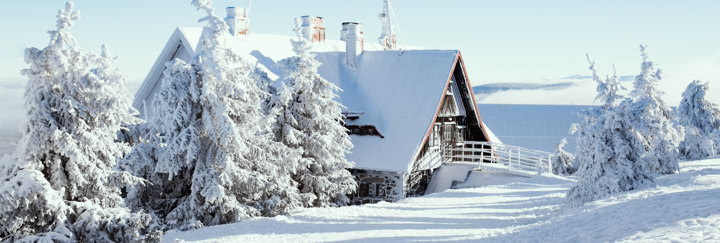 Winter house with snow forest
