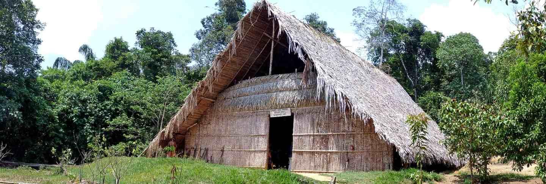 Hut brazil rainforest amzonas nature tropical