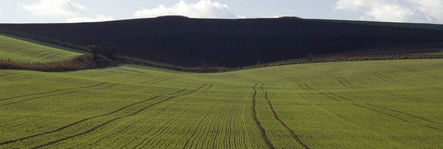 Aerial shot of a grassy field with a mountain in the distance at wiltshire
