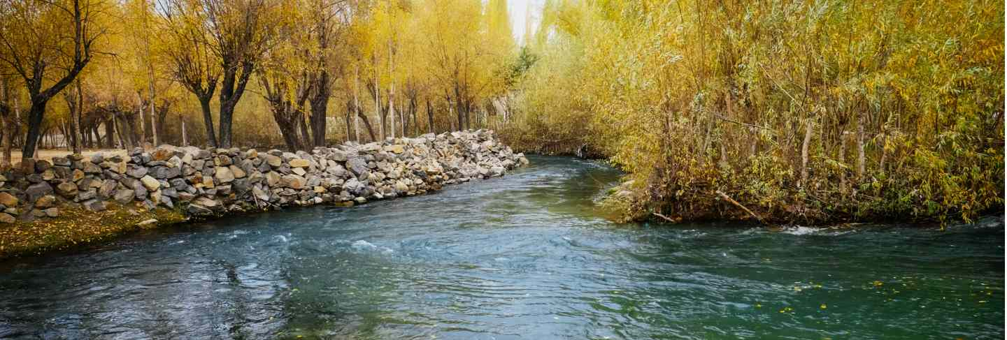 Clear water of creek flowing through colorful foliage grove in autumn season. Premium Photo