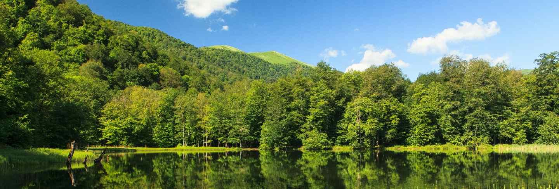 Beautiful the green scenery reflecting in the gosh lake, armenia