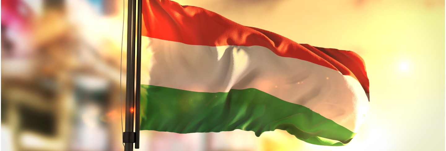 Hungary flag against city blurred background at sunrise backlight
