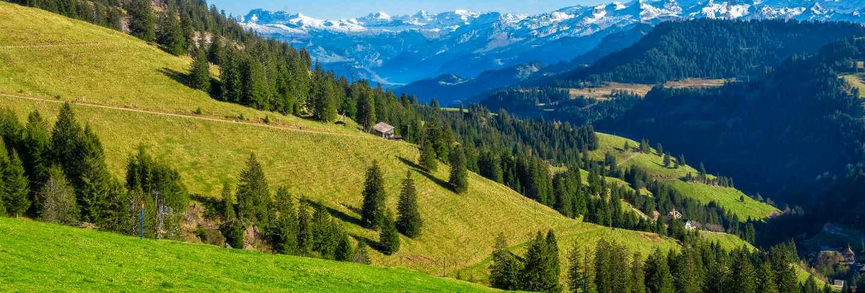 Beautiful swiss mountain in summer