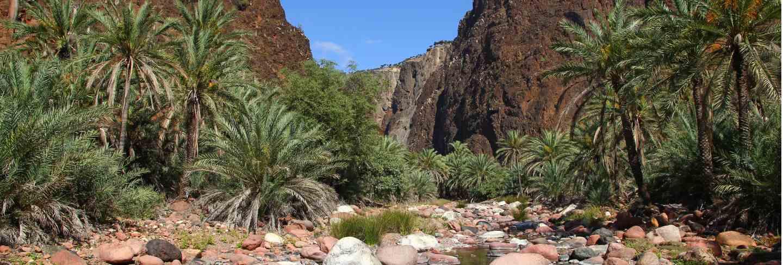 Wadi dirhur canyon, socotra island, indian ocean, yemen